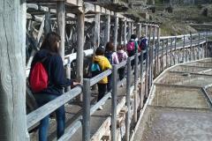 Excursión Salinas de Añana (2)